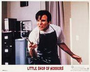 Little Shop of Horrors Lobby Card 06 Steve Martin