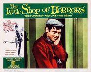 The Little Shop of Horrors Lobby Card 02 - Jonathan Haze