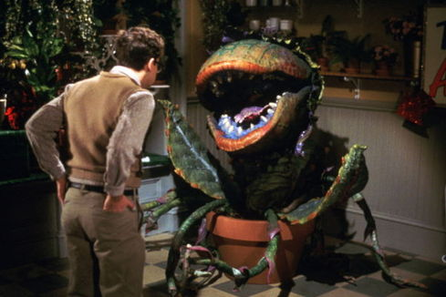 Audrey Ii Little Shop Of Horrors Wiki Fandom