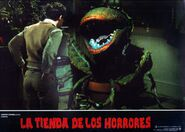 Little Shop of Horrors Spanish Lobby Card 08 Rick Moranis and Audrey II