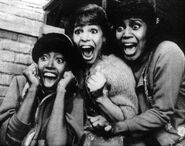 Little Shop of Horrors 1982 Jennifer Leigh Warren, Leilani Jones, Sheila Kay Davis