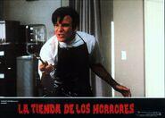 Little Shop of Horrors Spanish Lobby Card 06 Steve Martin