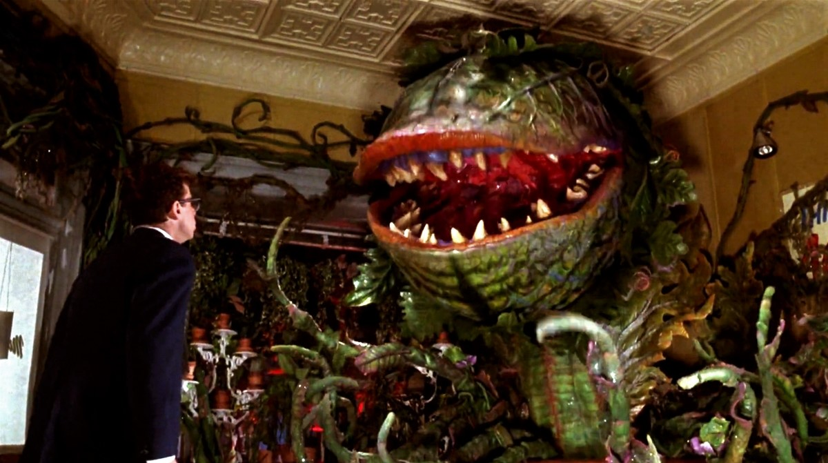 Image result for little shop of horrors""