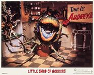 Little Shop of Horrors Lobby Card 05 Audrey II