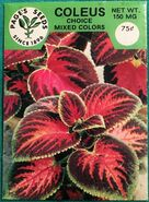 Little Shop of Horrors (1986) promotional coleus seeds 01