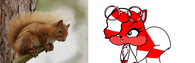 File:Red squirrel.png