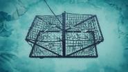 Cagedfish
