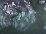 Bosque Arcturus
