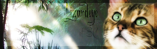 File:Lizardeye.png