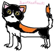 Spottedheart