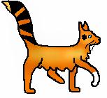 Orange2.long.m