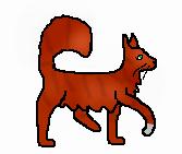Squirrelflight.apprentice.squirrelpaw