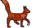 Squirrelflight/Fanpage