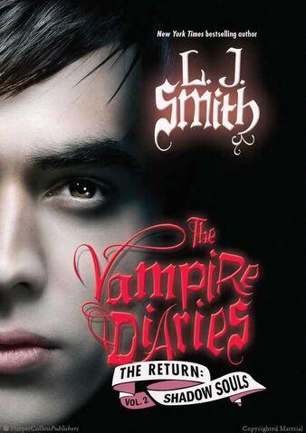 File:Vampire-diaries-return-shadow-souls.jpg
