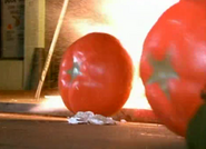 Tomato32