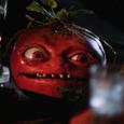 Tomato stub