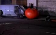 Tomato33