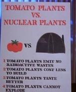 Tomato24