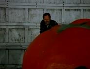 Tomato34