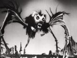 Rat Bat Spider