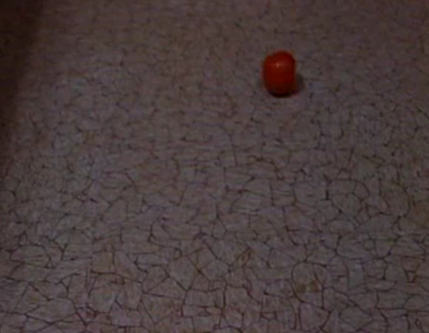 File:Tomato4.png