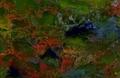 Thumbnail for version as of 21:27, September 1, 2017