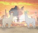 Llamas with Hats 4