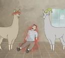 Llamas with Hats 1