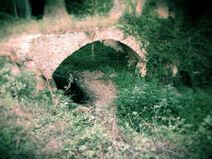 Pont, Molí i Font d'en Bosqueta