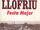 Festa Major de Llofriu 2000
