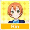 RinIcon