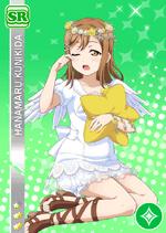 Hanamaru1196