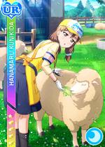 Hanamaru1177