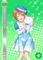 Rin1505