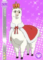 Alpaca629