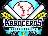 Liga Veracruzana Estatal de Béisbol