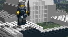 Rogue guardian boss