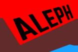 Risk Aleph
