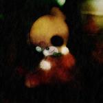 Happy Teddy Encyclopedia