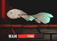 YangBreaching