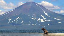 Miha na Kamchatke