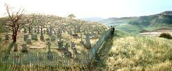 Cuesta Verde's Graveyard