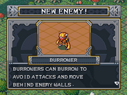 New enemy burrower