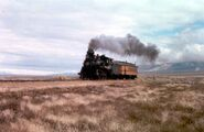 40 in Once Upon a Texas Train
