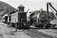 Yreka Western SW-8 No 21 and 2-8-2 No 19.