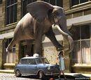 Elefante Salta-Coches