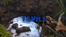 Tavili