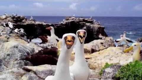 LoganWorm's Survivor Galapagos - Preview