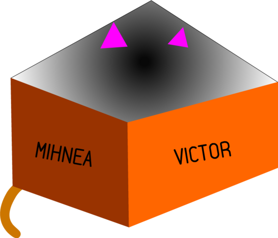 File:Mihnea Flash.png