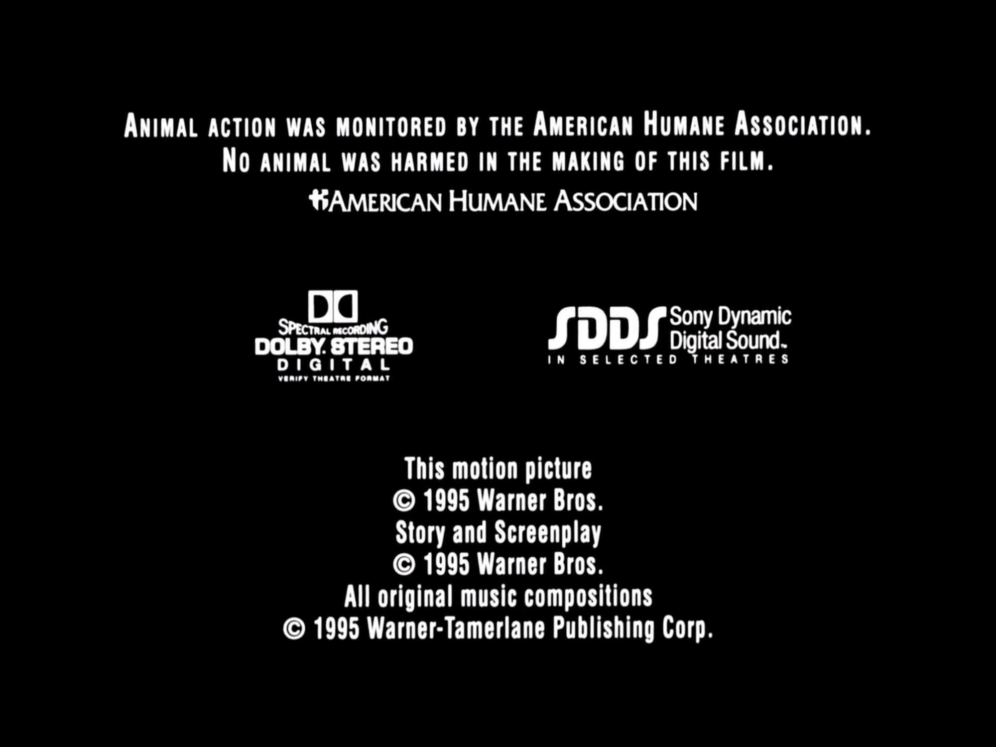 Sony Dynamic Digital Sound/Other | Logo Timeline Wiki ...